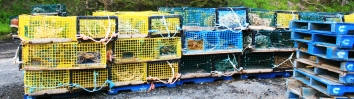 Empty crates at Hall's Harbour.