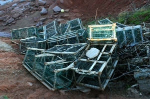 Tossed broken lobster crates at one of PEI's many shorefronts.