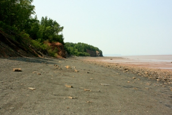 Blue Beach, near Hantsport, NS, where fossils and shale are aplenty.