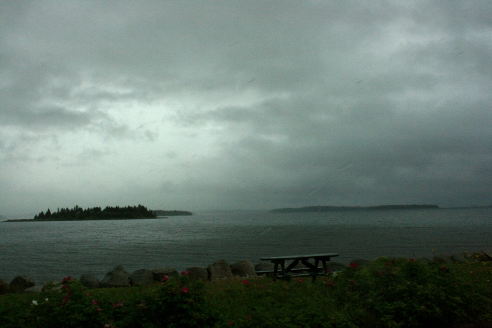 On the drive to Lunenburg, NS on a rainy summer day.