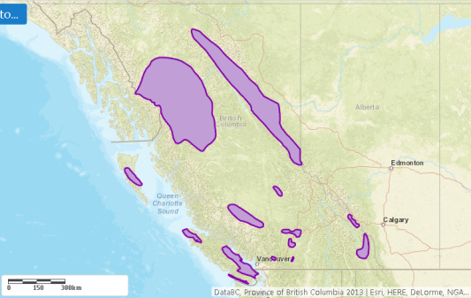 BC's important fossil areas, from DataBC site